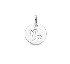 Steenbok Sterrenbeeld Hanger | Zilver