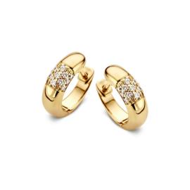 Excellent Jewelry Gouden Oorringen met Briljanten ter Decoratie