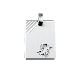 Rechthoekige Vissen Sterrenbeeld Graveer Hanger van Zilver