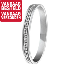 Edelstalen Bangle armband met Scharnier en Strass Stenen