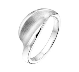 Zilveren Ring met Mat Hol Kopstuk en Rhodium