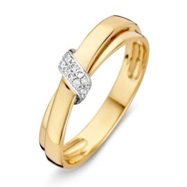 Excellent Jewelry Geelgouden Dubbele Strook Ring met Witgoud