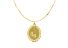 Ovale Leeuw Sterrenbeeld Hanger van Goud – Names4ever