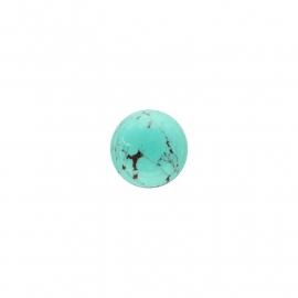 Turquoise Groen Edelsteen Insignia Munt van 14mm