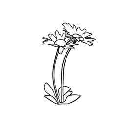 Goudkleurige Ronde Geboortebloem Hanger van Zilver | Birth Flower Necklace