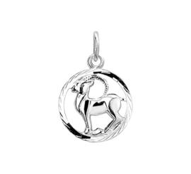 Ronde Steenbok Sterrenbeeld Bedel van Zilver 10.14511