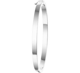 Slanke Vlakke Buis Bangle armband met Scharniersluiting