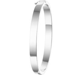 Gepolijste Vlakke Buis Bangle armband met Scharniersluiting