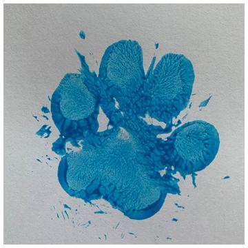 Pootafdruk van je huisdier op papier - Waterbasis blauwe verf