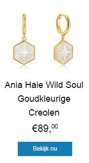 Shop deze zeshoekige creolen met goudkleurige coating vandaag nog!