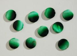 Duo-tone parelmoer kralen groen (S-006-SF)