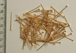 Nietstiftjes -2,5 cm- goudkleurig ((BN-019-KD)