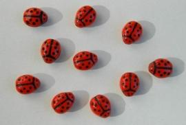 Lieveheersbeestjes (CB-032)