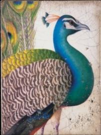 T287 Fabled Bird Sid Dickens tegel bij Jolijt