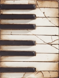 T 045 Piano Keys Sid Dickens tegel bij Jolijt