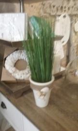 potje met schelpen en Seagrass SIA