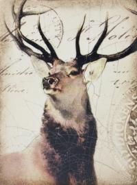 T 349 King of the Forest Sid Dickens Tegel bij Jolijt