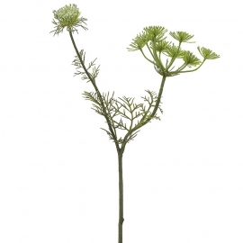 Sia Queen Anne's Lace Spray Green Height 42cm 010085 SIA