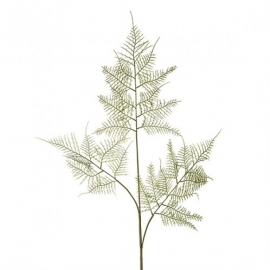 Asparagus Fern Spray H90cm SIA 190162
