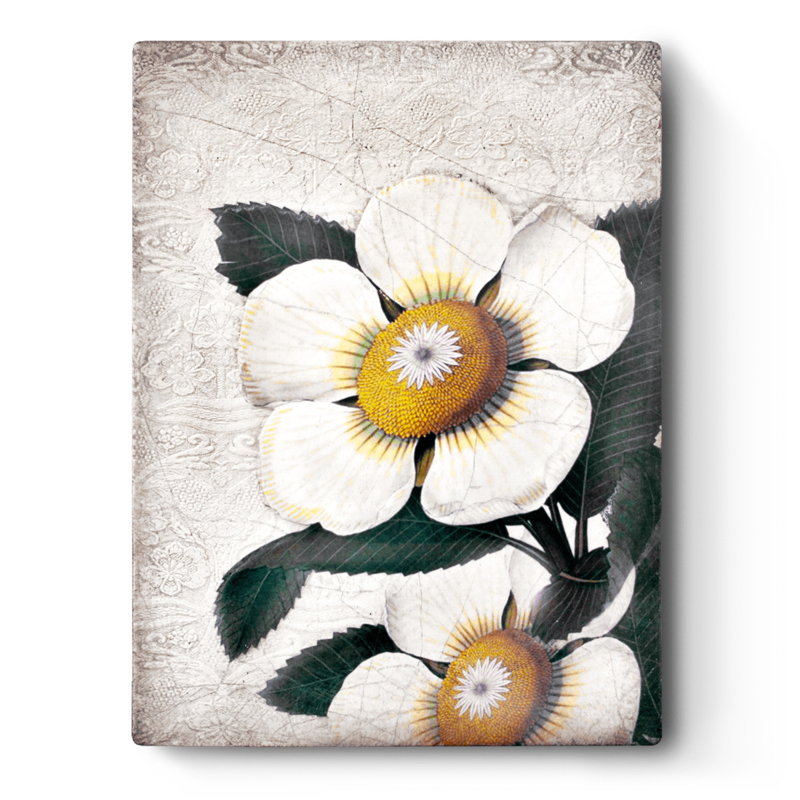 T487 White Blossoms Sid Dickens tegel
