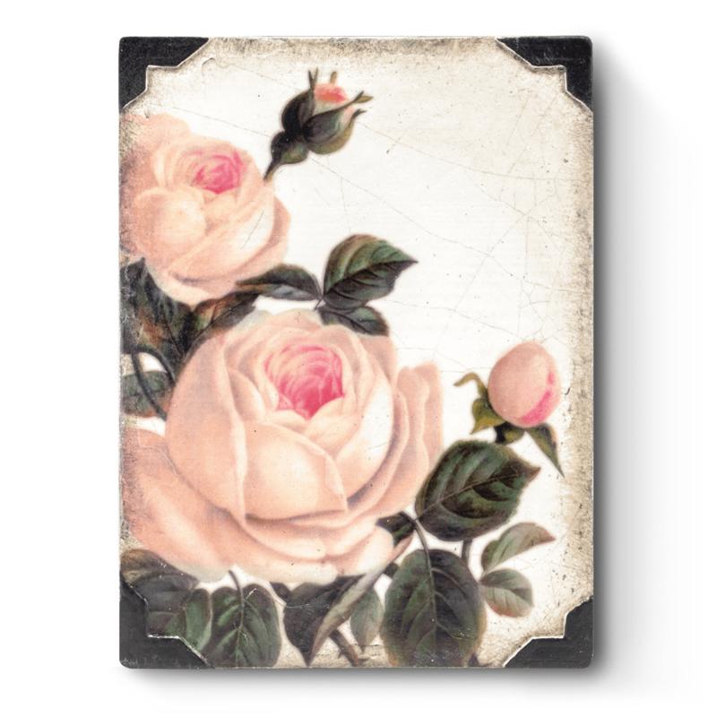 T464 Gentle Rose Sid Dickens Tegel