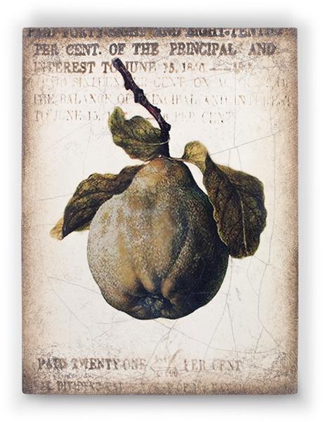 T430 Ancient Pear Sid Dickens Tegel