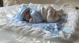Baby Boy Jelle met kussentje