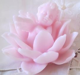 **Nieuw**  Engel in Lotusbloem