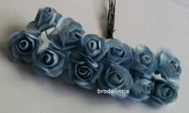Paper roosjes Blauw