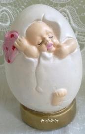 **Nieuw**  Mal Baby in Ei  1