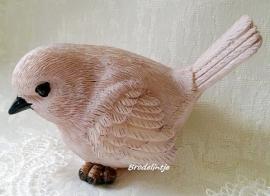 **Nieuw** Mal Vogel 1