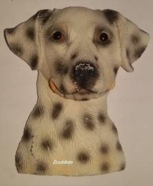 Mal Dalmatier