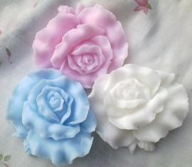 **Nieuw** Grote platte rozen (10 st)