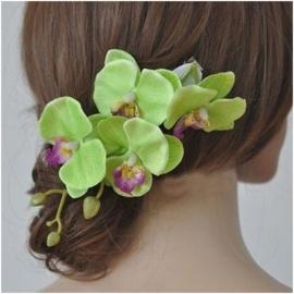 Prachtige grote haarclip orchidee groen