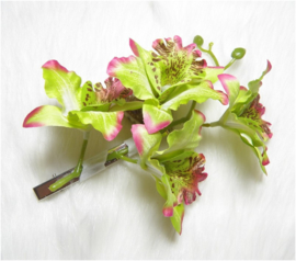 Prachtige grote haarclip 4 orchideeën groen