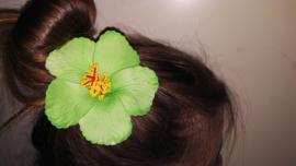 Geweldige Hibiscus Hawaïbloem 9 cm op clip groen