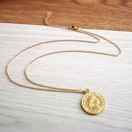 Leuke ketting met gouden muntje