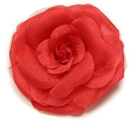 Grote roos op klem rood