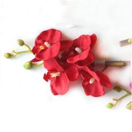 Prachtige grote haarclip orchidee rood