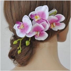 Prachtige grote haarclip orchidee wit/lila
