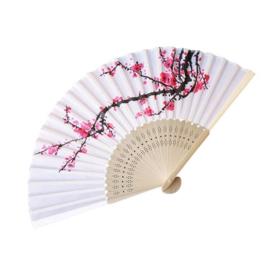 Mooie witte handwaaier met roze pruimenbloesem tak