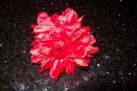 Leuke kleine rode haarbloem op clip