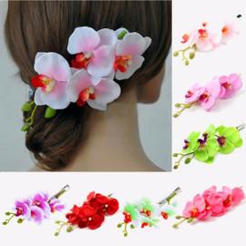 Prachtige grote haarclip orchidee wit/roze