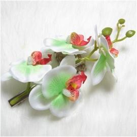 Prachtige grote haarclip orchidee wit/groen
