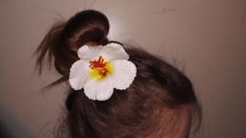 Geweldige Hibiscus Hawaïbloem 9 cm op clip wit