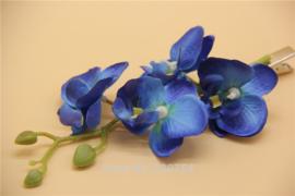 Prachtige grote haarclip orchidee blauw