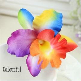 Haarclip enkele orchidee regenboog