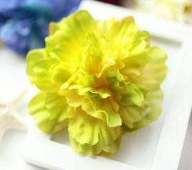 Prachtige grote Pioenroos op haarclip geel