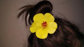 Geweldige Hibiscus Hawaïbloem 9 cm op clip geel