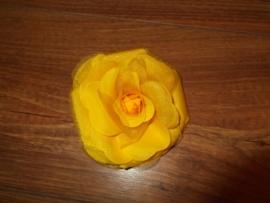 Grote roos op klem geel